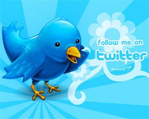 Популярный сервис микроблогов Twitter